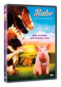 Babe: Galantní prasátko DVD